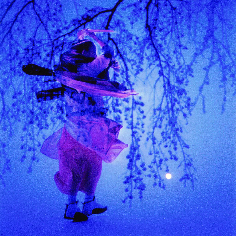 桜を訪ねて<br>SAKURA OBLATION - O-Getsu Ryu | 桜月流美劔道